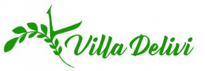 Logo Delivi 4